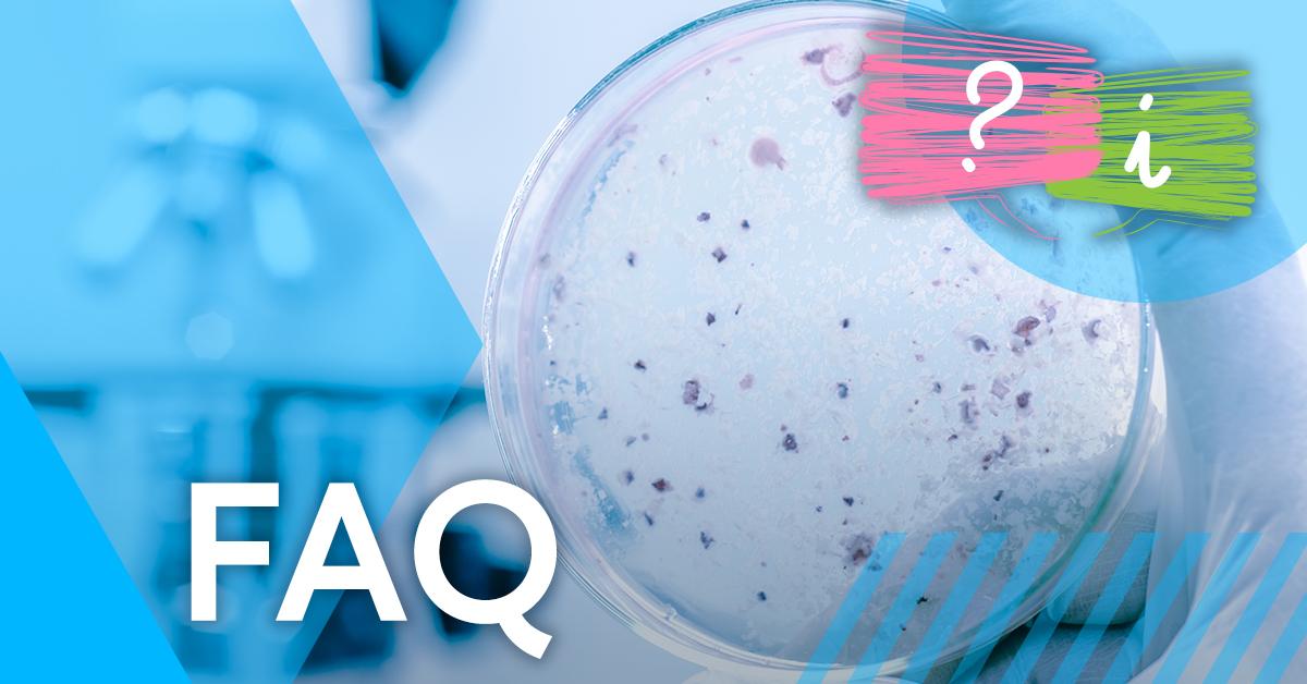 What are the risks of legionella bacteria?