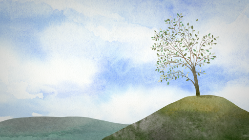 A peaceful tree on a hill