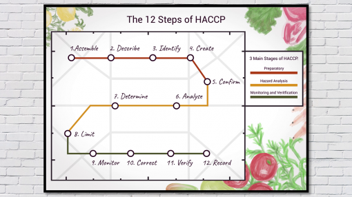 The 12 stages of HACCP