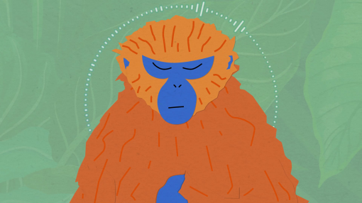 An animation of a monkey